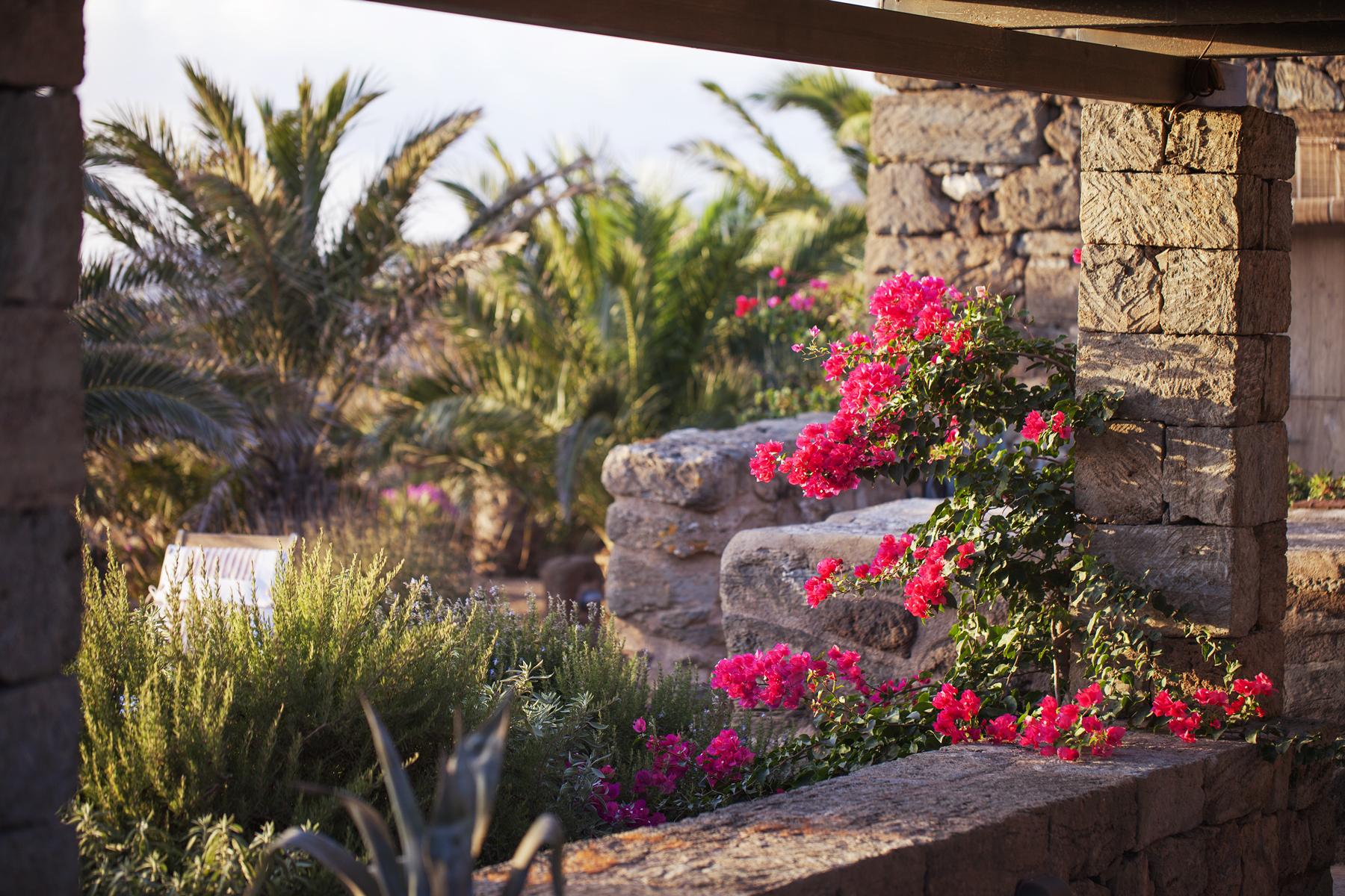 Dammuso vigna 2 people tenuta borgia dammusi pantelleria - Terrazas rusticas ...