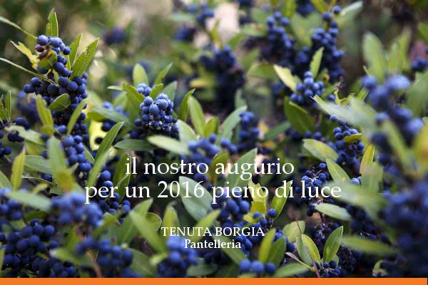 Tenuta Borgia - auguri