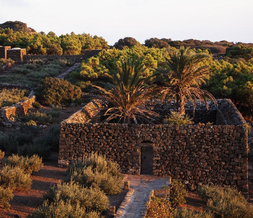 Tenuta Borgia - pantelleria-borgia-natura-verde_10